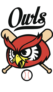 ThinkstockPhotos 474726354 OwlBaseballLogo 1 - Why Are There No Owl Mascots in Big League Sports?